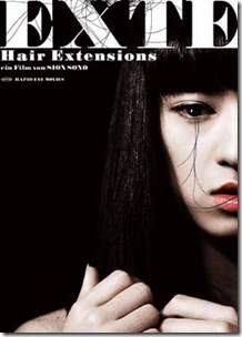 Hair Extension Poster